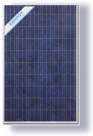 Renogy 240 Watt Poly solar panel
